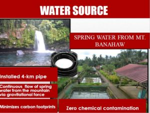 costales nature farm -water-source