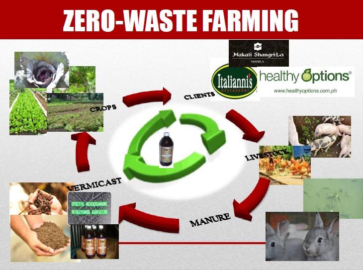 costales-zero-waste-farming