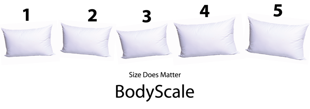 Mr. Big Body Scale Pillows
