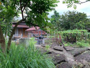 FOGO Edible Landscape