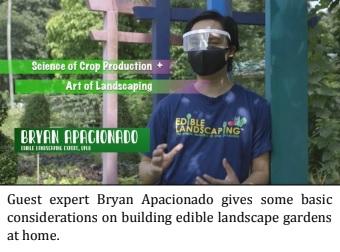 'Kalye Mabunga' Features Edible Landscaping, Urban Agri Basics