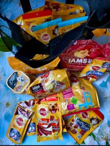 Pedigree Products on Shopee
